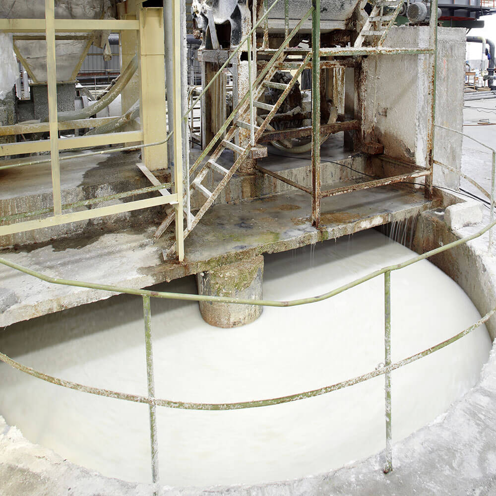 Pulp & Paper Processing